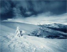 Winter / ***
