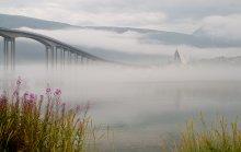 Nebel über dem Fjord / Norway