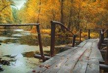 Im Herbst ... / ***