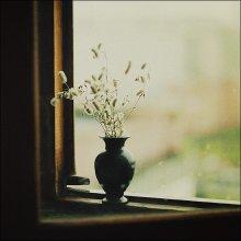 Herbst / .......