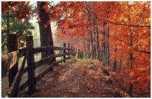 Herbst ... / ***