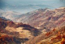 Carpathian November / ***