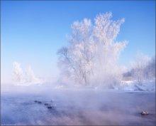 / Fragment von einem frostigen Morgen / / -30°C