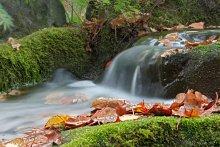 Autumn creek / ***