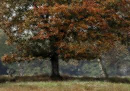 WALD(KUNST) / Ein Waldmotiv in der Herbstzeit. Umgewandelt zum GEMÄLDE ?