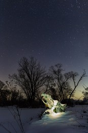 Drachen-Geburt / Nachtaufnahme eines Baumstumpfes. Beleuchtet mit einer LED Taschenlampe.