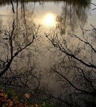 Reflexion ... / ***