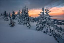 Steiermark Winter / Winter am Gaberl in der Steiermark.