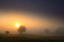 Fairyland / Landscape - Mecklenburg-Vorpommern