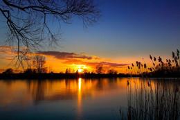 sunset / Bei fast wolkenlosen Himmel in der Nähe von Hannover an einem kleinem See fotografiert.