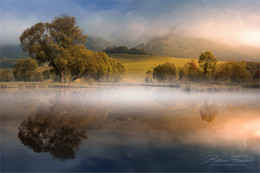 Herbstnebel / Morgens am Rattenberger Teich in der Steiermark.