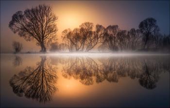 Goldener Morgen / Morgens an einen kleinen Teich in der Steiermark.