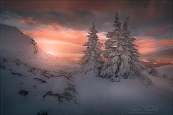 Winterlandschaft / Winterlandschaft auf der tubalpe am Gaberl in der Steiermark.