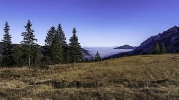 November im Alpstein / ***