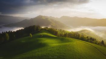 Einfache Landschaft / ***