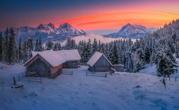 Scheibelalm / Morgens auf der Scheibelalm in der Steiermark