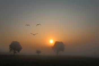 flying smile / Landschaft