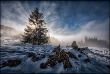 Über dem Nebel. / Strahlen