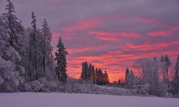 Winterlandschaft / Winterworld im Knüllgebirge.