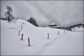 Winterzeit / Alp