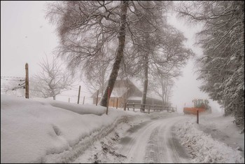 Nebel und Schnee. / Winter